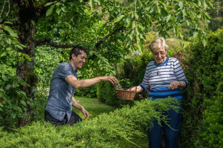 Partage 1 Toit : un jeune et une senior en train de ramasser des cerises ensemble